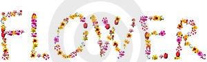 Flower Royalty Free Stock Photos - Image: 8650498