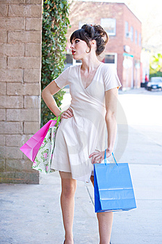 Attractive Young Woman Shopping Royalty Free Stock Image - Image: 8650556