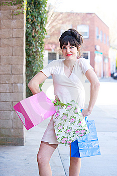 Attractive Young Woman Shopping Stock Photography - Image: 8650752