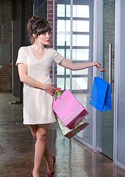 Attraktivt Shoppingkvinnabarn Royaltyfri Fotografi - Bild: 8651037