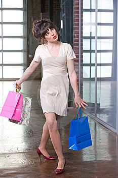 Attractive Young Woman Shopping Stock Images - Image: 8651124