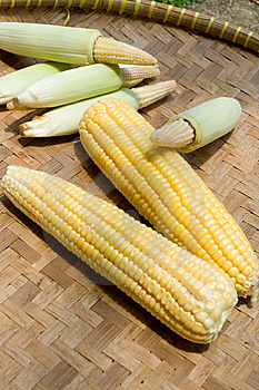 Corn On Bamboo Tray Royalty Free Stock Photography - Image: 8651177