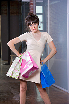 Attractive Young Woman Shopping Stock Image - Image: 8651271