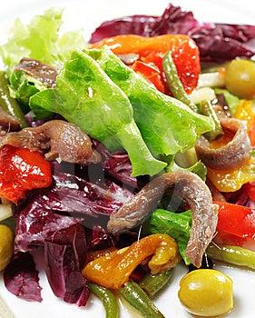 Salada Com Anchova Fotografia de Stock - Imagem: 8651572