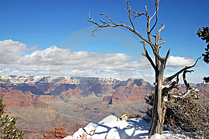 Grand Canyon Winter Stock Image - Image: 8653991