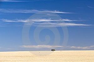 Dry Land Royalty Free Stock Photos - Image: 8654288
