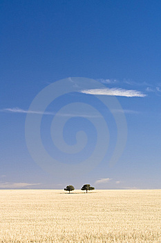 Just The Two Of Us Stock Images - Image: 8654294