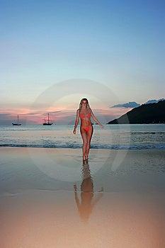 Sunset Beach Stock Photos - Image: 8654443