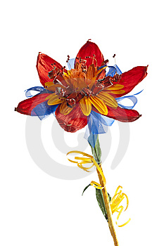 Bouquet Royalty Free Stock Image - Image: 8654566