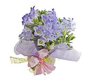 Bouquet Stock Images - Image: 8654584
