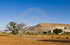 Morocco Stock Photos - Image: 8654863