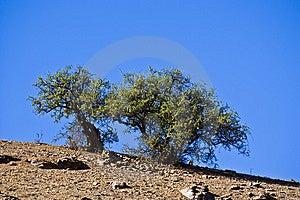 Morocco Stock Photo - Image: 8655120