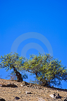 Morocco Stock Photo - Image: 8655130