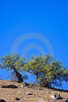 Il Marocco Fotografia Stock - Immagine: 8655130