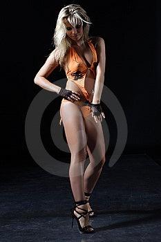 Beautiful Woman Stock Photo - Image: 8655920