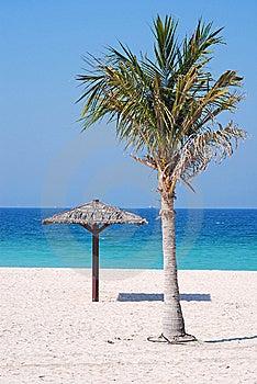 Beach Stock Image - Image: 8657331