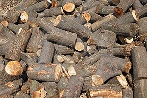 Firewoods Stock Image - Image: 8657701