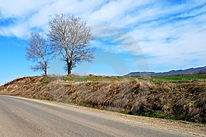 Beautiful Road Side Royalty Free Stock Image - Image: 8658366