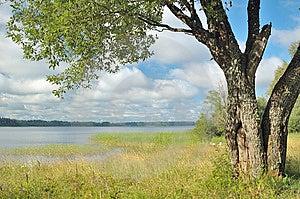 Landscape Royalty Free Stock Image - Image: 8660616