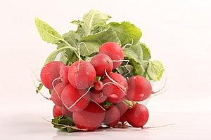 Radishes Stock Photo - Image: 8660910