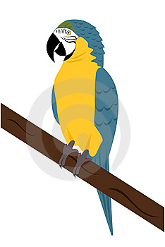 Macaw Parrot Royalty Free Stock Photography - Image: 8661237