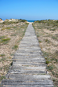 Way To The Beach Stock Photo - Image: 8661290