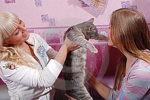 Two Women With Cat Stock Photography - Image: 8661292