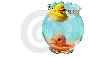 Rubber Duckies Royalty Free Stock Images - Image: 8661919