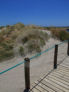 Beach Walkway Stock Image - Image: 8663251