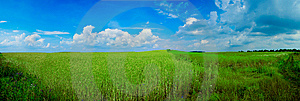 Blue And Green Royalty Free Stock Photography - Image: 8663897