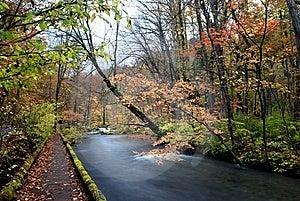 Val Van Oirase, Japan Royalty-vrije Stock Fotografie - Afbeelding: 8664187