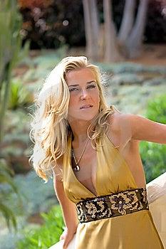 Blonde Stock Afbeeldingen - Afbeelding: 8666644