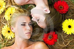 Haare In Den Blumen Lizenzfreies Stockfoto - Bild: 8666775