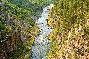 El Río Yellowstone Imágenes de archivo libres de regalías - Imagen: 8667319