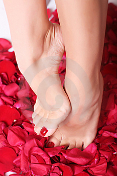 Feet And Rose-petals Royalty Free Stock Images - Image: 8667429