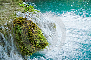 Water Stream Stock Images - Image: 8668464