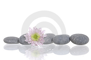 Spa Stones And Flower Royalty Free Stock Photos - Image: 8668998