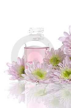 Spa Item Royalty Free Stock Photo - Image: 8669165