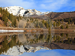 Spring Reflections Royalty Free Stock Photos - Image: 8669368