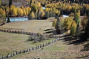 Autumn Landscape Royalty Free Stock Images - Image: 8669559