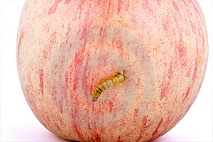 Apple And Worm Royalty Free Stock Images - Image: 8674539