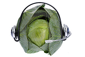 Cabbage With Earphones On White Royalty Free Stock Photography - Image: 8703607