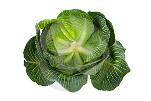Cabbage Isolated On White Stock Photography - Image: 8703672