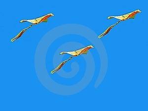 Kites In The Sky Stock Image - Image: 8703851