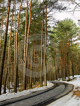 Winding Road Royalty Free Stock Images - Image: 8706939
