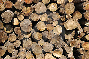 Firewood Pile Stock Photography - Image: 8714542