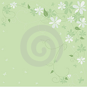 Green spring Royalty Free Stock Photos