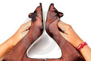 Ladies Footwear Royalty Free Stock Photos - Image: 8732058