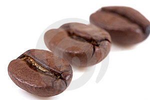 Coffee Bean Stock Image - Image: 8747341