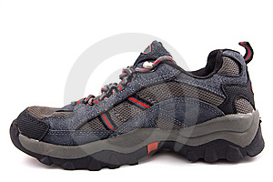 Sport Shoe Stock Photo - Image: 8748840